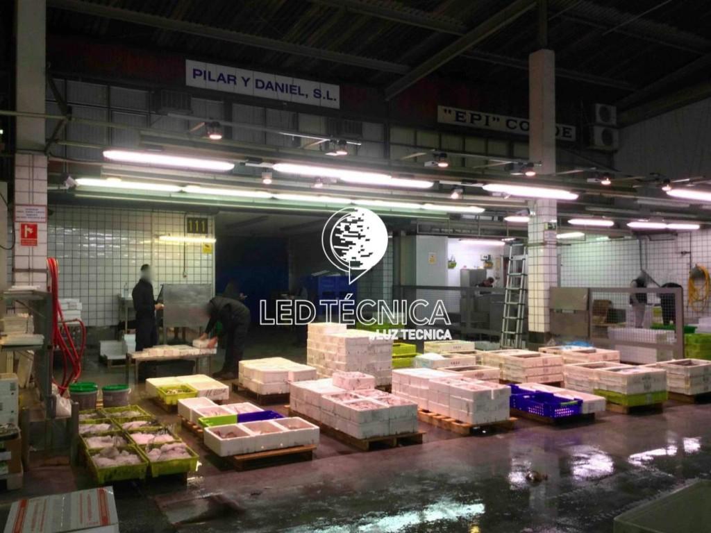 Focos led para pescaderias focos led baratos pescaderias for Focos led para terrazas